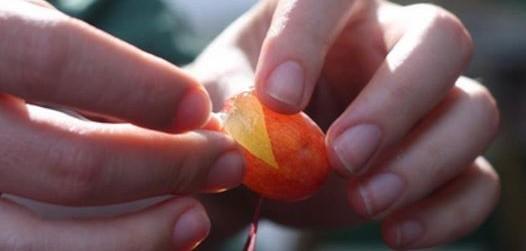 Pelar uvas facilmente
